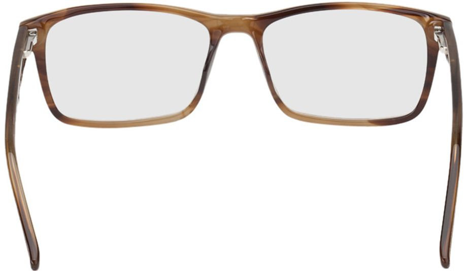Picture of glasses model Rotterdam-brown-mottled in angle 180