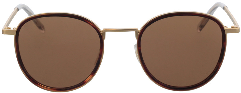 Picture of glasses model TAKE A SHOT Ada: Havana/Gold 48-22 in angle 0