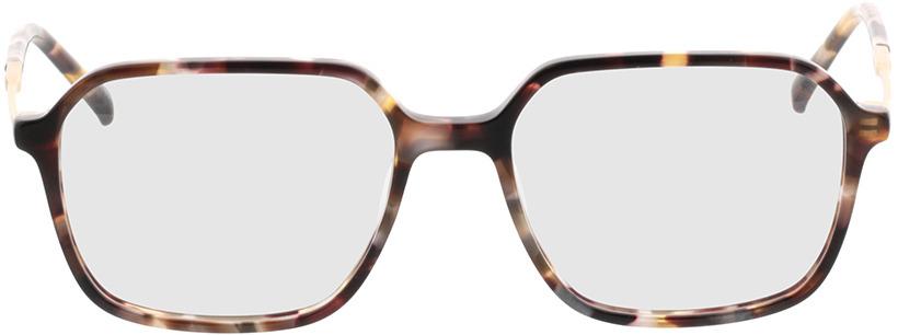 Picture of glasses model Indio-havana/matt gold in angle 0