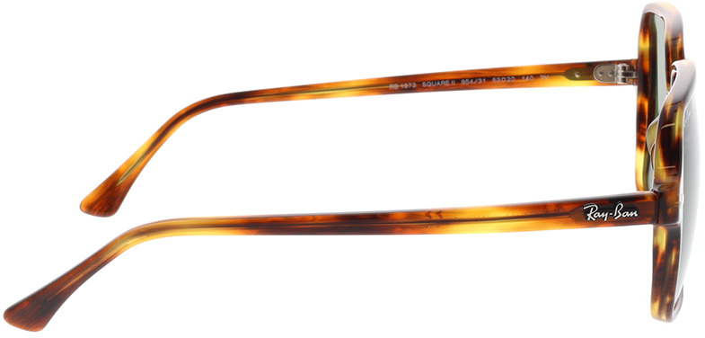 Picture of glasses model Ray-Ban RB1973 954/31 53-20 in angle 90