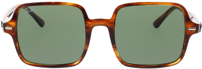 Picture of glasses model Ray-Ban RB1973 954/31 53-20 in angle 0