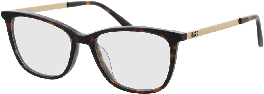 Picture of glasses model Calvin Klein CK21701 235 51-16 in angle 330