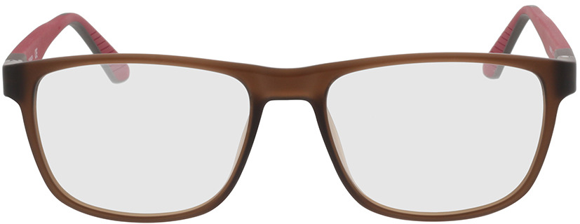 Picture of glasses model Calvin Klein CK20536 210 54-17 in angle 0
