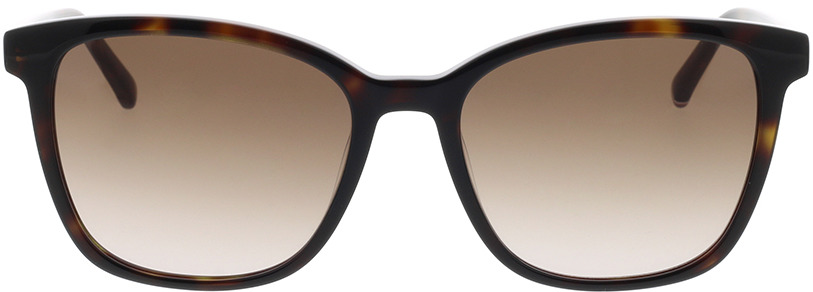 Picture of glasses model Tommy Hilfiger TH 1723/S 086 54-18 in angle 0