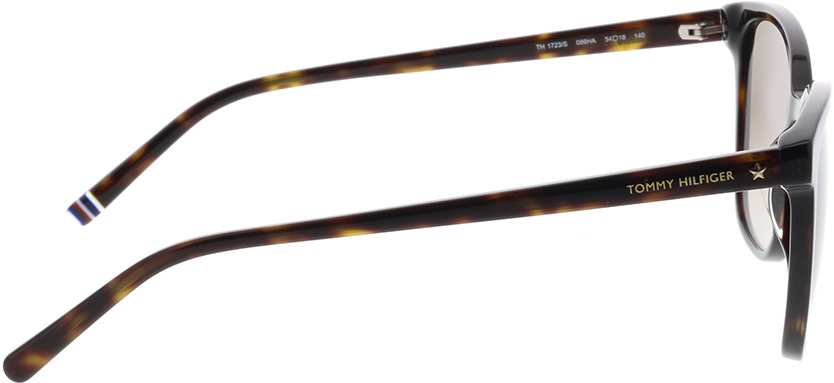 Picture of glasses model Tommy Hilfiger TH 1723/S 086 54-18 in angle 90