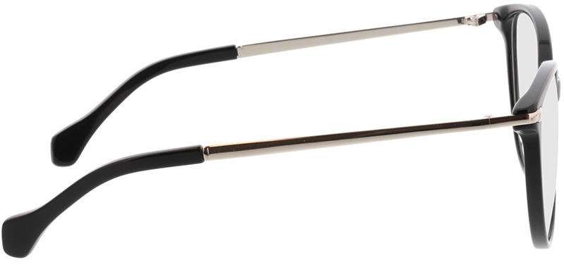 Picture of glasses model Eucla zwart/zilver in angle 90