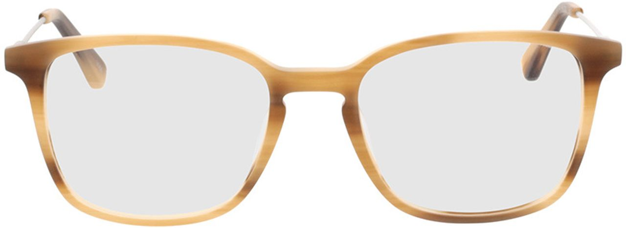 Picture of glasses model Lazio-braun-meliert/silber in angle 0