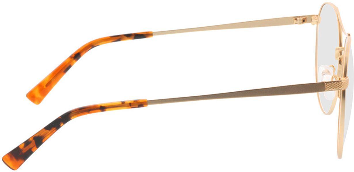 Picture of glasses model Leto-gold/havana in angle 90