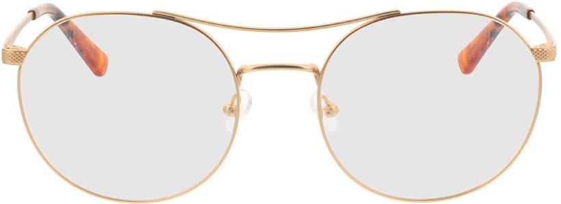 Picture of glasses model Leto-gold/havana in angle 0