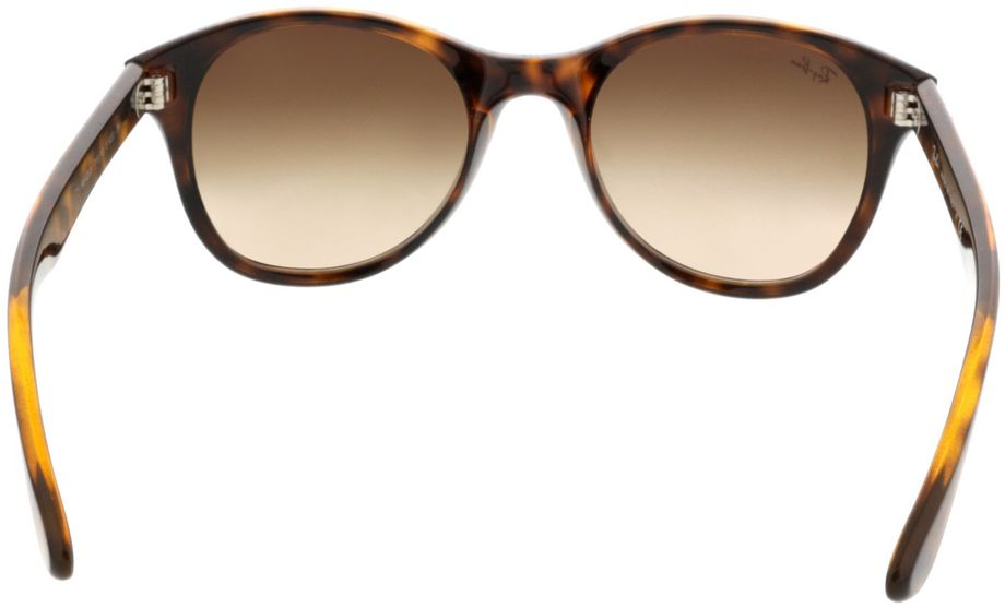 Picture of glasses model Ray-Ban RB4203 710/13 51-20 in angle 180