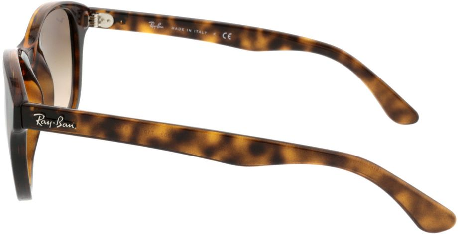 Picture of glasses model Ray-Ban RB4203 710/13 51-20 in angle 270