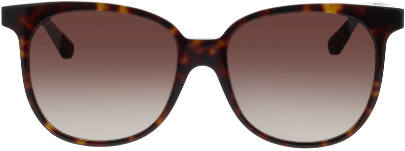 Picture of glasses model Wood Fellas Sunglasses Moyland zwart oak/havana 55-17 in angle 0