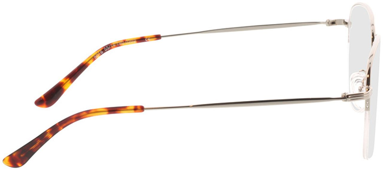 Picture of glasses model Tripoli-silber in angle 90