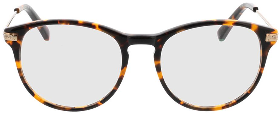 Picture of glasses model Elverum-dunkle hornoptik/gold in angle 0
