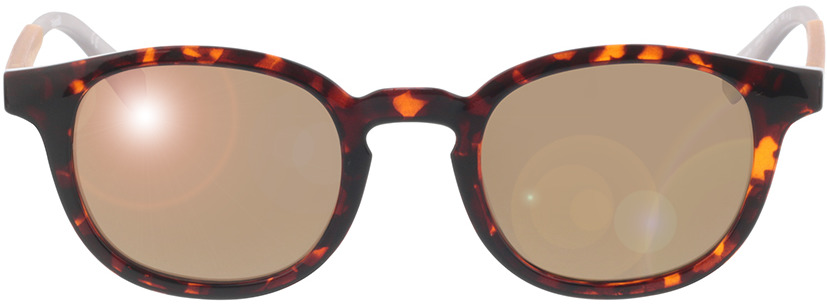 Picture of glasses model Polaroid PLD 2096/S 086 48-23 in angle 0