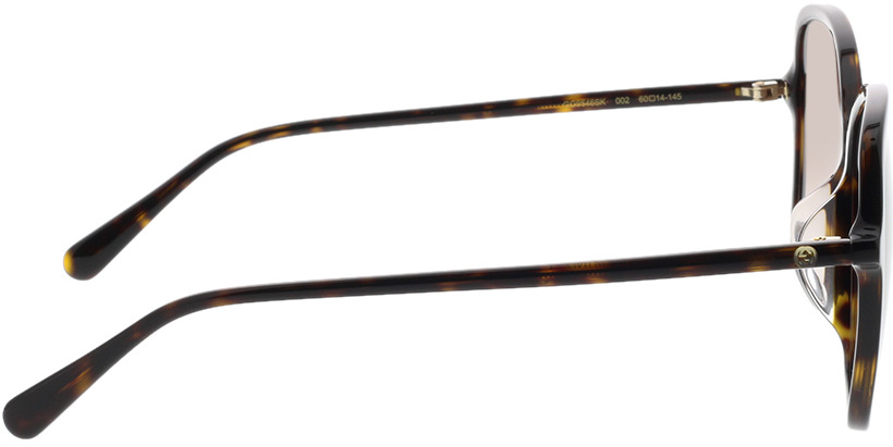 Picture of glasses model Gucci GG0546SK-002 60-14 in angle 90