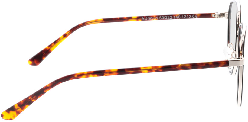 Picture of glasses model Miles-braun-meliert in angle 90