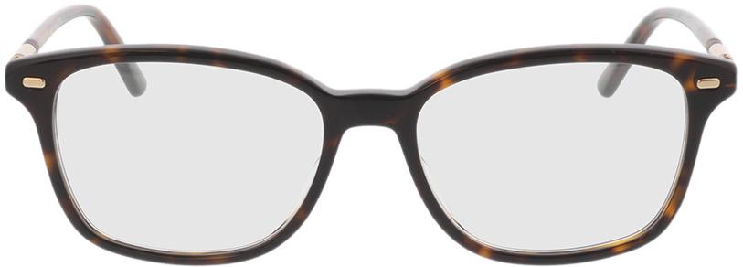 Picture of glasses model Gucci GG0520O-002 53-17 in angle 0