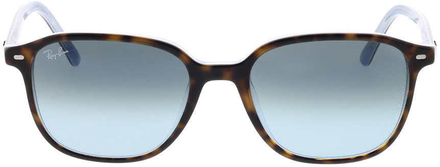 Picture of glasses model Ray-Ban Leonard RB2193 13163M 53-18 in angle 0