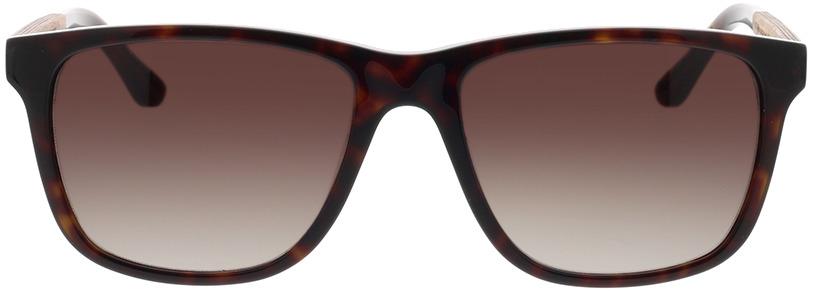 Picture of glasses model Wood Fellas Sunglasses Oberhaus macassar/havana 56-18 in angle 0