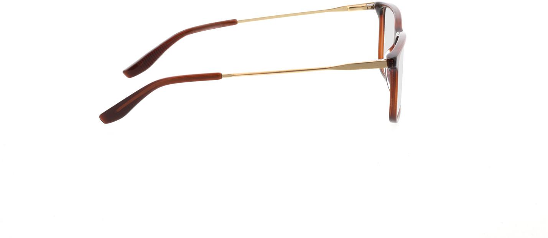 Picture of glasses model Bonum-braun transparent in angle 90