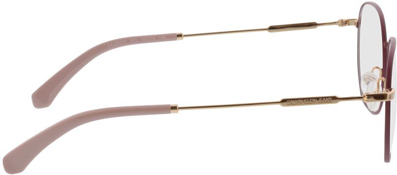 Picture of glasses model Calvin Klein Jeans CKJ20101 645 50-19 in angle 90