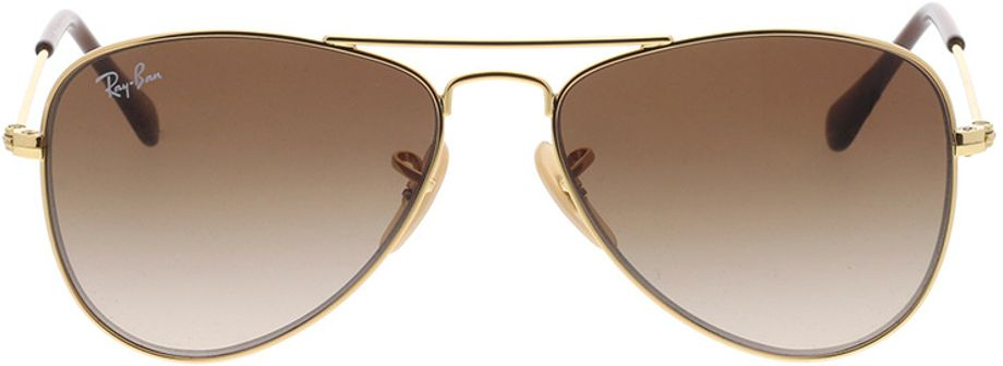 Picture of glasses model Ray-Ban Junior Aviator RJ9506S 223/13 50-13 in angle 0