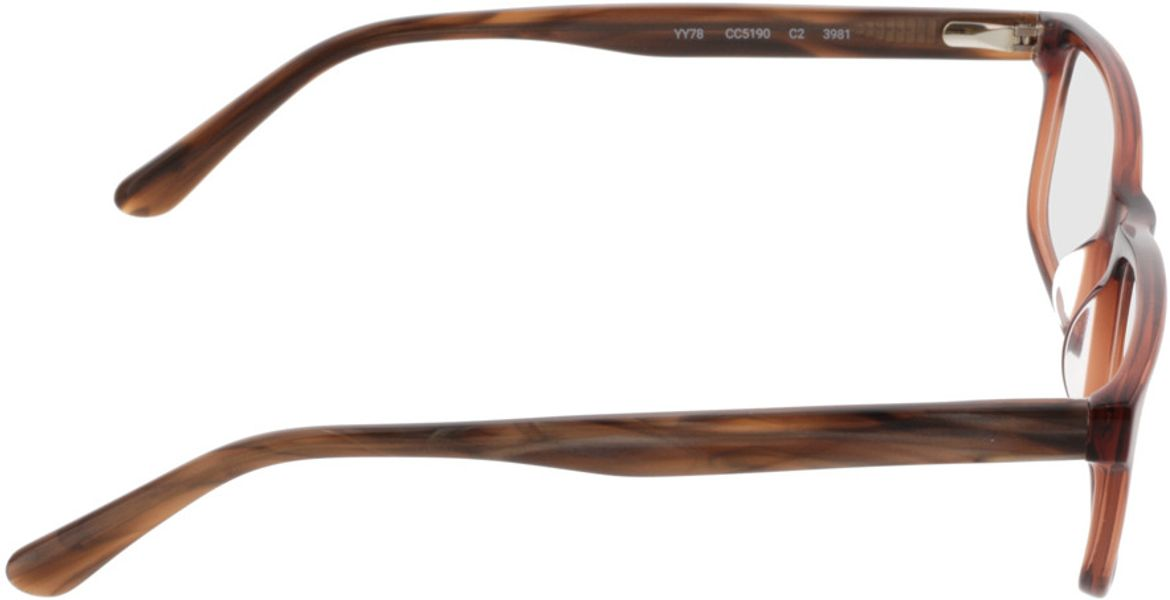 Picture of glasses model Hastings-brown_transparent in angle 90