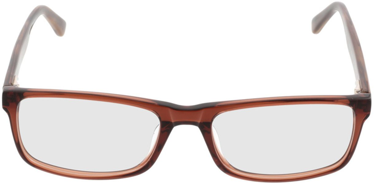 Picture of glasses model Hastings-brown_transparent in angle 0