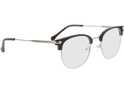 Brille Wimbledon-schwarz/silber