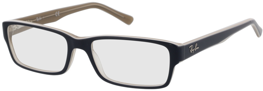 Picture of glasses model Ray-Ban RX5169 8119 52-16 in angle 330