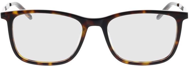 Picture of glasses model Hugo HG 1018 086 52-17 in angle 0