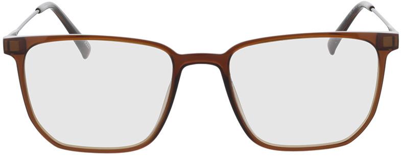Picture of glasses model Charles-braun-transparent/matt schwarz in angle 0
