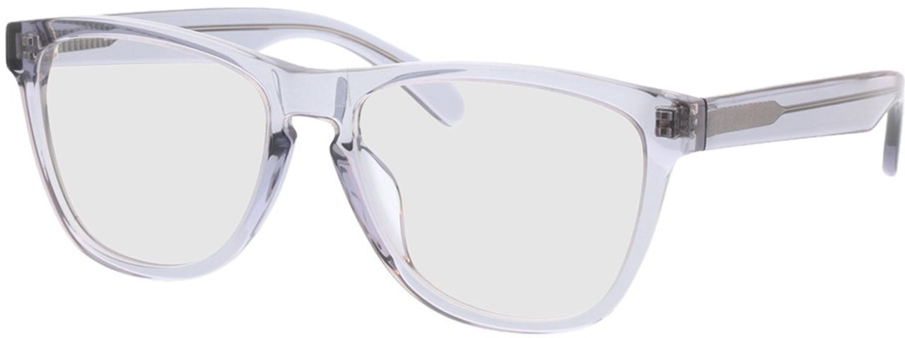 Picture of glasses model Warwick-grau-transparent in angle 330