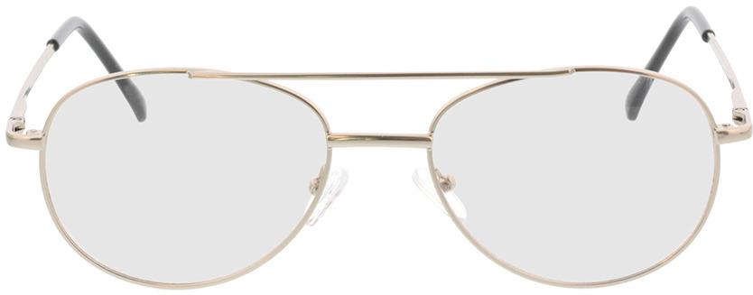 Picture of glasses model Amelio-matt silber in angle 0