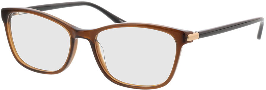 Picture of glasses model Terra-braun in angle 330