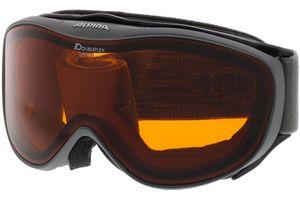 Skibrille CHALLENGE 2.0 D grey DOUBLEFLEX hicon
