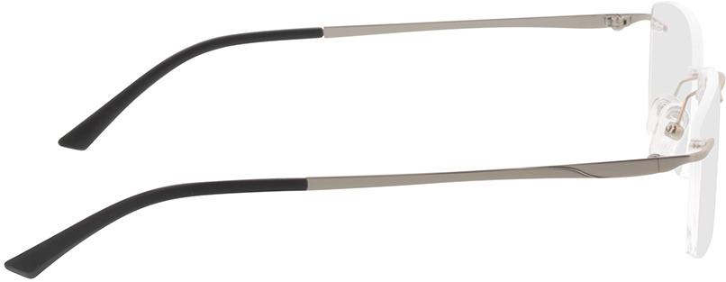Picture of glasses model Livius-matt silber in angle 90