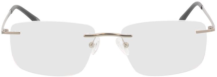 Picture of glasses model Livius-matt silber in angle 0
