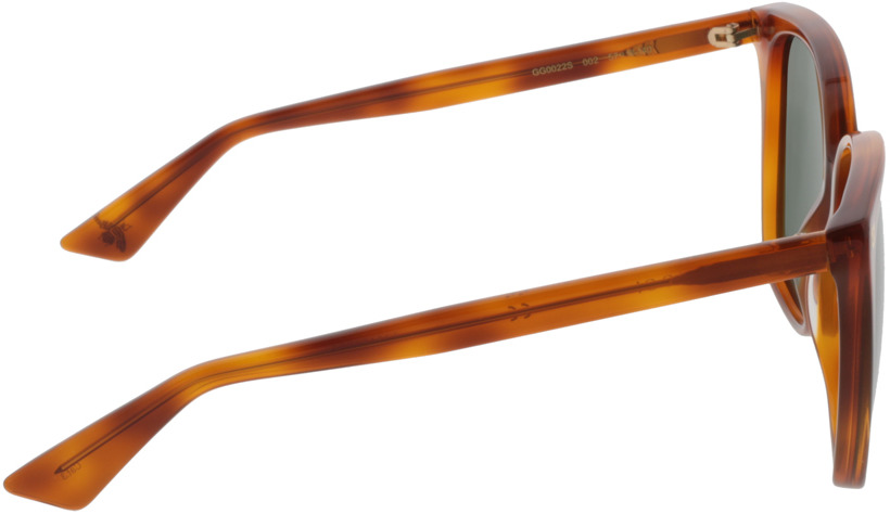 Picture of glasses model Gucci GG0022S-002 57-18 in angle 90