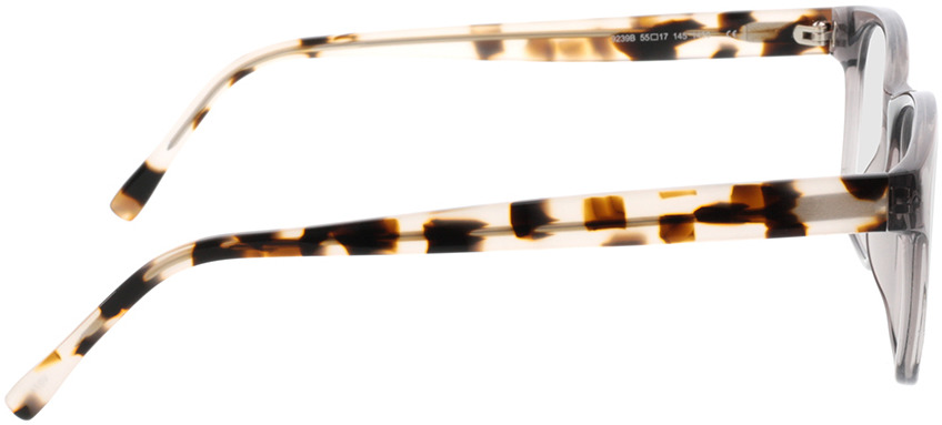 Picture of glasses model Nautica-transparent grau in angle 90