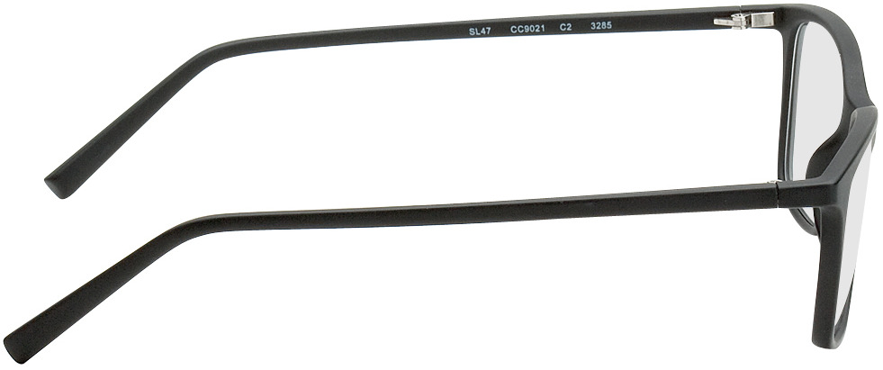 Picture of glasses model Bergama noir in angle 90
