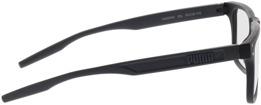 Picture of glasses model Puma PU0254O-001 54-16 in angle 90