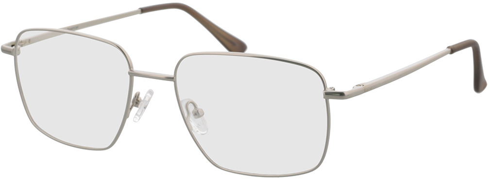 Picture of glasses model Spencer-silber in angle 330