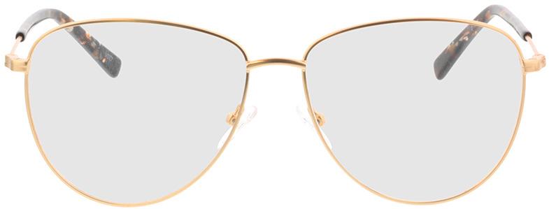 Picture of glasses model Riley-matt gold in angle 0