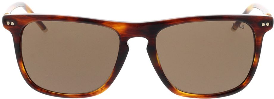 Picture of glasses model Polo Ralph Lauren PH4168 500773 53-17 in angle 0