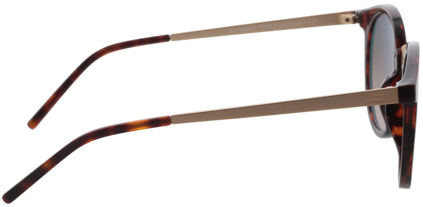 Picture of glasses model TAKE A SHOT Leonie: Havana - Braun Gradient Bio TR-90 + Metal in angle 90