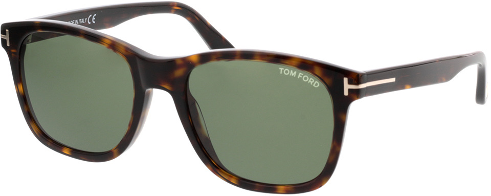Picture of glasses model Tom Ford Eric FT0595 52N  in angle 330
