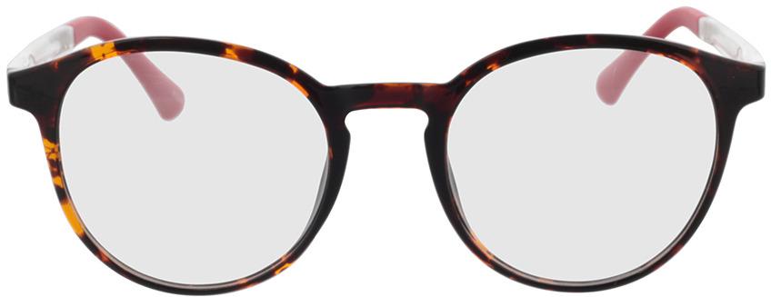 Picture of glasses model Toro-havana in angle 0