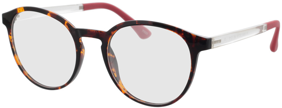 Picture of glasses model Toro-havana in angle 330